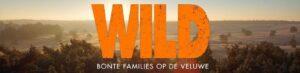 Openluchtvoorstelling film Wild @ Plein Den Haag